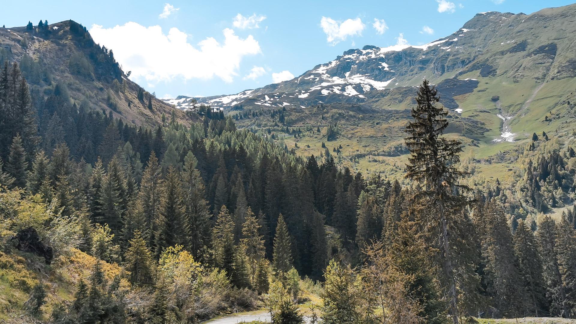 Aussicht von der Alm auf das umliegende Gebirge